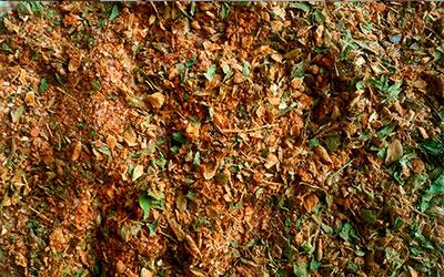 Mezcla de especias para salsa Chimichurri
